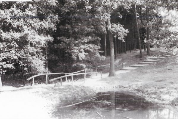 Waldweg zum Heiligenberg